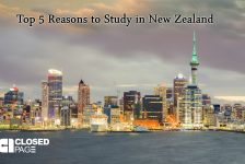 Top 5 Reasons to Study in New Zealand